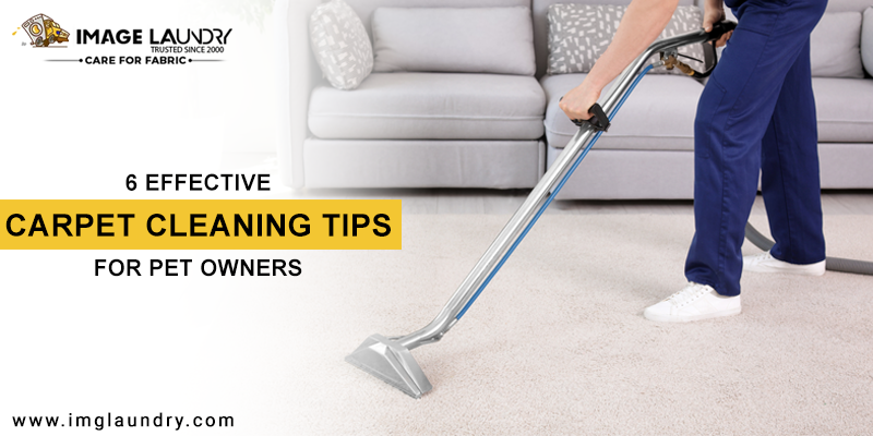 Effective Carpet Cleaning Tips for Pet Owners